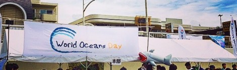 World Oceans Day 2015